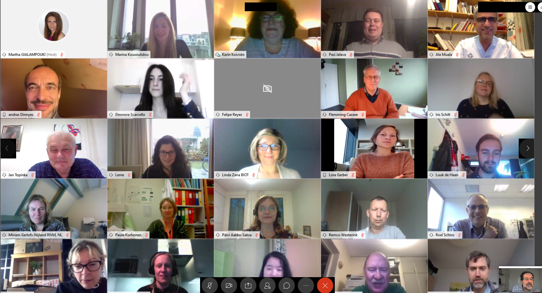 Picture of consortium members taking part in this online meeting